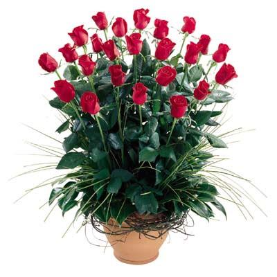 Erzurum çiçek gönderme sitemiz güvenlidir  10 adet kirmizi gül cam yada mika vazo