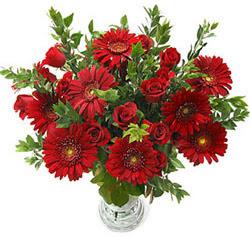 5 adet kirmizi gül 5 adet gerbera aranjmani  Erzurum hediye sevgilime hediye çiçek