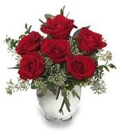 Vazo içerisinde 5 adet kırmızı gül  Erzurum çiçek online çiçek siparişi