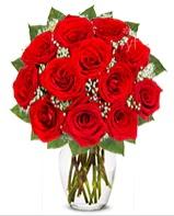 12 adet vazoda kıpkırmızı gül  Erzurum çiçek yolla , çiçek gönder , çiçekçi