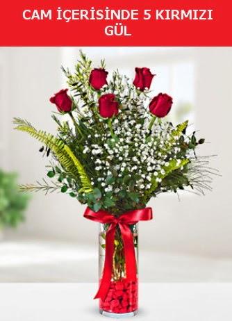 Cam içerisinde 5 adet kırmızı gül  Erzurum çiçek servisi , çiçekçi adresleri