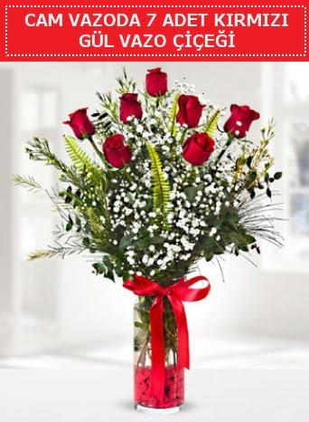 Cam vazoda 7 adet kırmızı gül çiçeği  Erzurum çiçek siparişi vermek