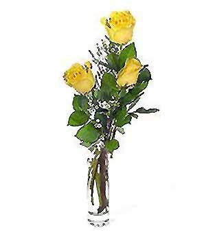 Erzurum güvenli kaliteli hızlı çiçek  3 adet kalite cam yada mika vazo gül