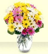 Erzurum güvenli kaliteli hızlı çiçek  mevsim çiçekleri mika yada cam vazo