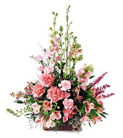 Erzurum anneler günü çiçek yolla  mevsim çiçeklerinden özel