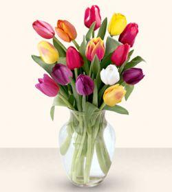 Erzurum kaliteli taze ve ucuz çiçekler  13 adet cam yada mika vazoda laleler