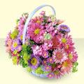 Erzurum çiçek siparişi sitesi  bir sepet dolusu kir çiçegi  Erzurum çiçek siparişi vermek