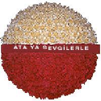 arma anitkabire - mozele için  Erzurum çiçek siparişi vermek