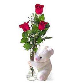 oyuncak ve 3 adet gül  Erzurum çiçek servisi , çiçekçi adresleri
