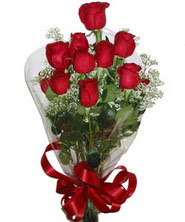 9 adet kaliteli kirmizi gül   Erzurum internetten çiçek satışı