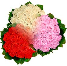 3 renkte gül seven sever   Erzurum 14 şubat sevgililer günü çiçek