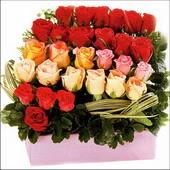 15 adet renkli gül ve cam   Erzurum çiçek online çiçek siparişi