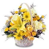 sadece sari çiçek sepeti   Erzurum çiçek siparişi vermek
