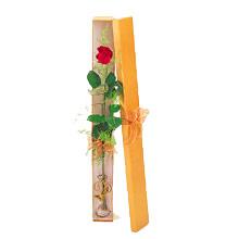 ince  kutuda  1  gül   Erzurum online çiçek gönderme sipariş