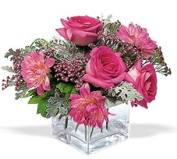 Erzurum İnternetten çiçek siparişi  cam içerisinde 5 gül 7 gerbera çiçegi