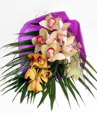 Erzurum İnternetten çiçek siparişi  1 adet dal orkide buket halinde sunulmakta