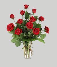Erzurum İnternetten çiçek siparişi  11 adet kirmizi gül vazo halinde