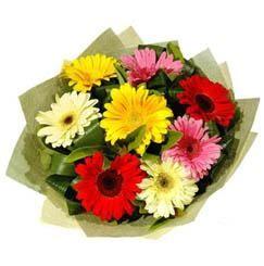 9 adet karisik gerbera demeti  Erzurum ucuz çiçek gönder