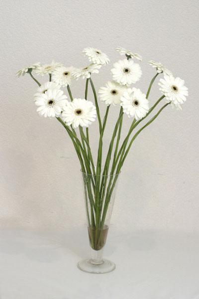 Erzurum ucuz çiçek gönder  cam vazo içerisinde 17 adet sade gerbera