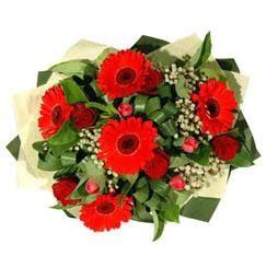 Erzurum anneler günü çiçek yolla   5 adet kirmizi gül 5 adet gerbera demeti