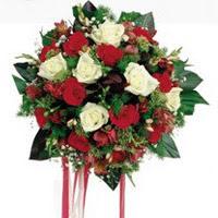 Erzurum anneler günü çiçek yolla  6 adet kirmizi 6 adet beyaz ve kir çiçekleri buket