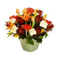 mevsim çiçeklerinden karma aranjman  Erzurum çiçekçiler