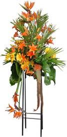 Erzurum çiçek servisi , çiçekçi adresleri  perförje tanzimi dügün nikah ve açilislara