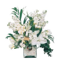 Erzurum güvenli kaliteli hızlı çiçek  sadece beyazlardan olusmus mevsim cam yada mika tanzim