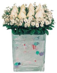 Erzurum çiçek online çiçek siparişi  7 adet beyaz gül cam yada mika vazo tanzim