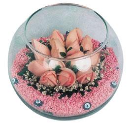 Erzurum çiçek mağazası , çiçekçi adresleri  cam fanus içerisinde 10 adet gül