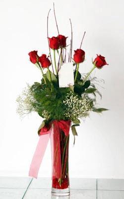 Erzurum İnternetten çiçek siparişi  6 adet kirmizi gül ve cam yada mika vazo