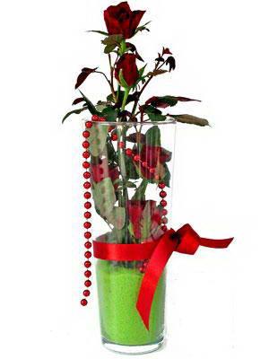 Erzurum online çiçekçi , çiçek siparişi  Cam yada mika içerisinde 9 adet kirmizi gül - sevdiklerinize özel