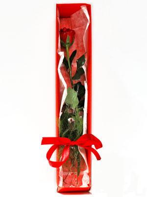 Erzurum çiçek siparişi sitesi  1 adet kutuda gül