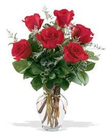 Erzurum çiçek siparişi vermek  7 adet kirmizi gül cam yada mika vazoda sevenlere