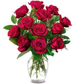 Erzurum online çiçekçi , çiçek siparişi  1 düzine kirmizi gül sevenlere özel vazo gülleri