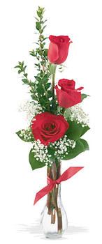 Erzurum İnternetten çiçek siparişi  mika yada cam vazoda 3 adet kirmizi gül