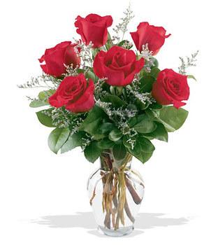 Erzurum İnternetten çiçek siparişi  cam yada mika vazoda 6 adet kirmizi gül