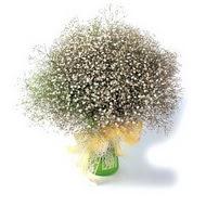 Erzurum ucuz çiçek gönder  cam yada mika vazo içerisinde cipsofilya demeti