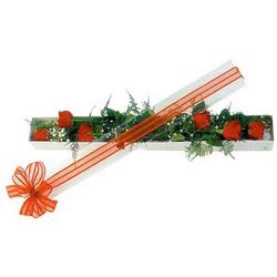 Erzurum çiçek servisi , çiçekçi adresleri  6 adet kirmizi gül kutu içerisinde
