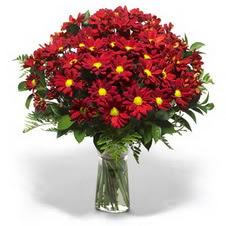 Erzurum online çiçek gönderme sipariş  Kir çiçekleri cam yada mika vazo içinde