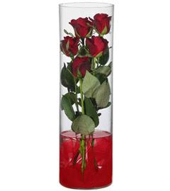 cam içerisinde 7 adet kirmizi gül  Erzurum kaliteli taze ve ucuz çiçekler