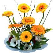 camda gerbera ve mis kokulu kir çiçekleri  Erzurum cicekciler , cicek siparisi