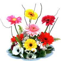 Erzurum hediye sevgilime hediye çiçek  camda gerbera ve mis kokulu kir çiçekleri