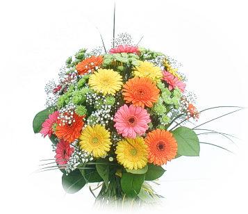 13 adet gerbera çiçegi buketi  Erzurum online çiçekçi , çiçek siparişi