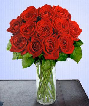 Anneme 12 adet cam içerisinde kirmizi gül  Erzurum çiçek servisi , çiçekçi adresleri