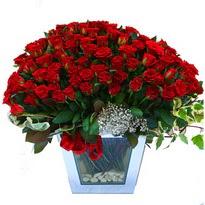 Erzurum kaliteli taze ve ucuz çiçekler   101 adet kirmizi gül aranjmani
