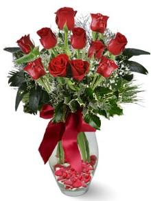 9 adet gül  Erzurum çiçek mağazası , çiçekçi adresleri  kirmizi gül