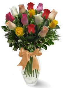 15 adet vazoda renkli gül  Erzurum çiçek mağazası , çiçekçi adresleri