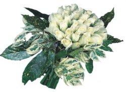 Erzurum güvenli kaliteli hızlı çiçek  9 Beyaz gül Özel kisiler için