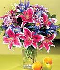 Erzurum ucuz çiçek gönder  Sevgi bahçesi Özel  bir tercih